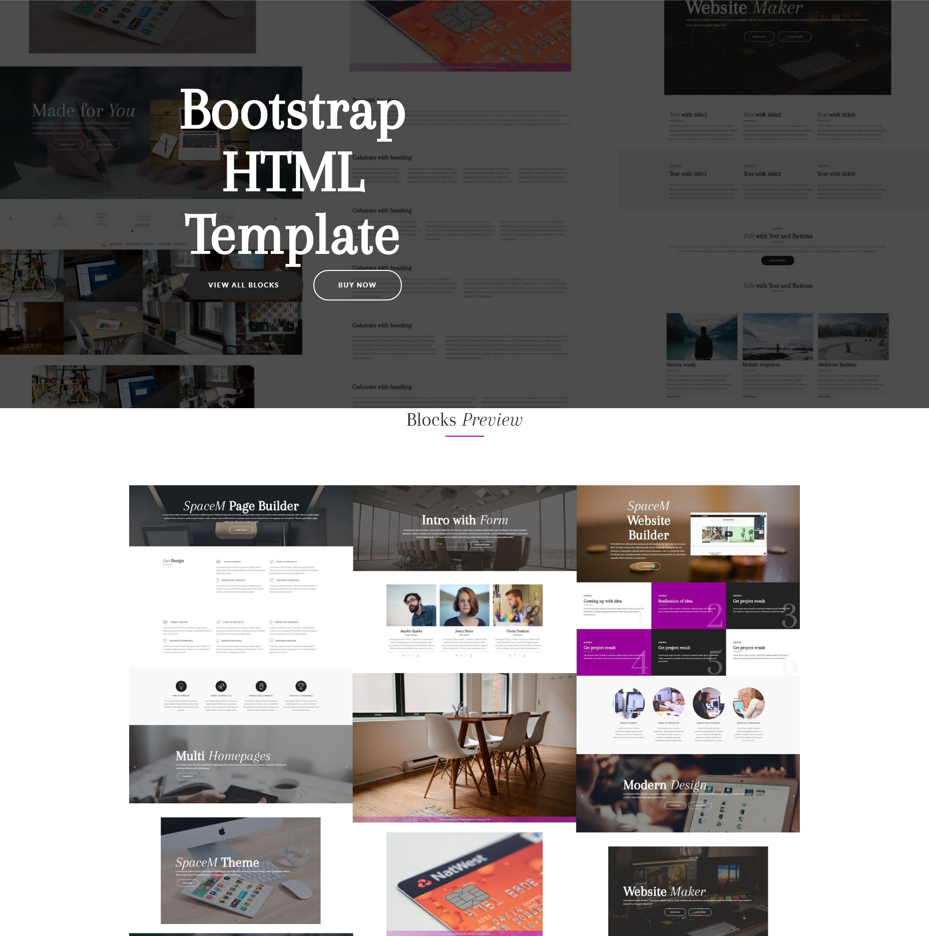 CSS3 Bootstrap SpaceM Templates