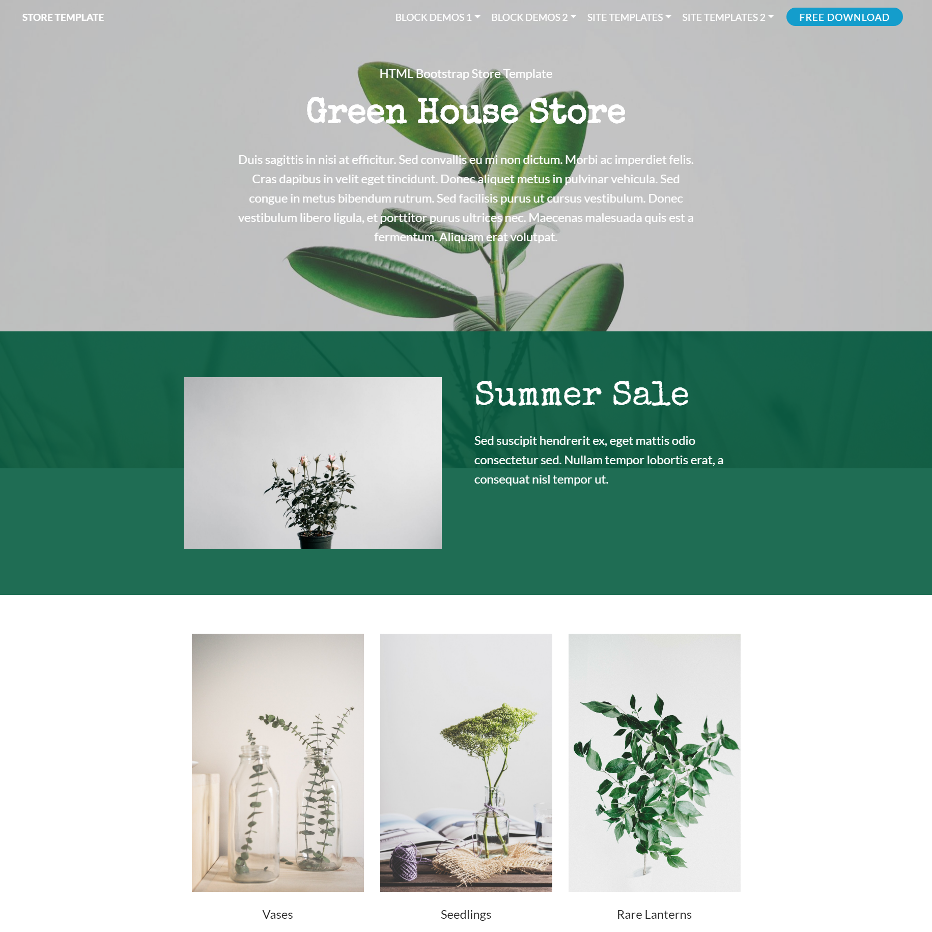 HTML Bootstrap Store Templates